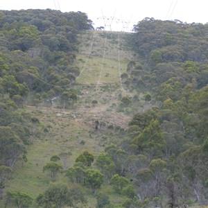Peppercorn Hill