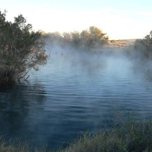 Swimming in Dalhousie Springs