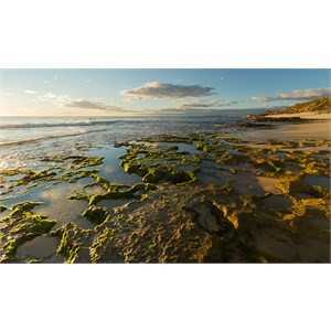 North Beach reef