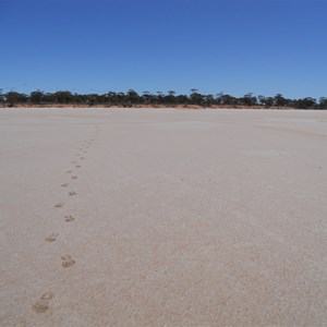 Footsteps from campground to lookout