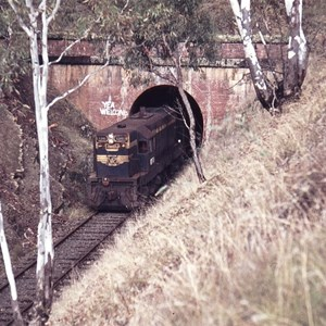 Train exists Balham Tunnel (Cheviot Tunnel)