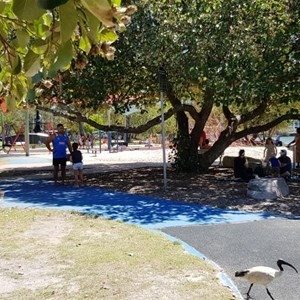The park near Cotton Tree