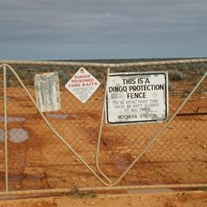Dingo fence on the track Haig - Cocklbiddy