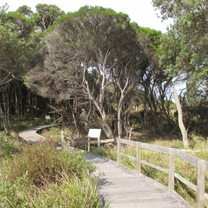 Boardwalk section of Nature Trail