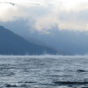 Fog sprites spin in the wind