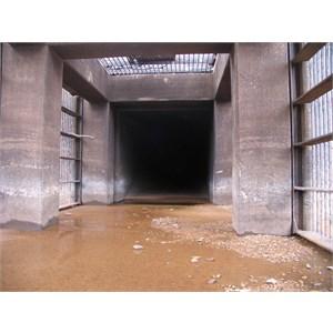 Tunnel portal from inside trashrack