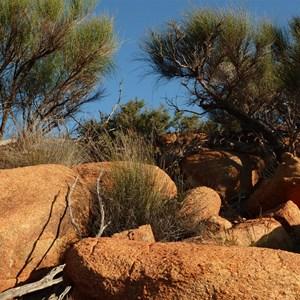 View of Baladjie Rock