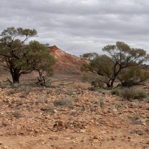 Gidgee, Painted Desert, SA