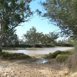 Rounded lignum bushes line Cullyamurra waterhole, SA